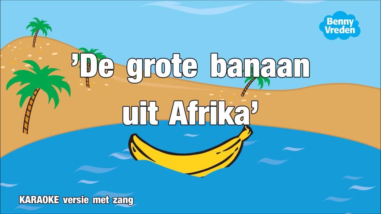 Afrikaanse zwarte kutjes