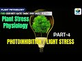 PHOTOINHIBITION | LIGHT STRESS(PART-4) | STRESS PHYSIOLOGY CSIR NET SOLVED QUESTIONS |