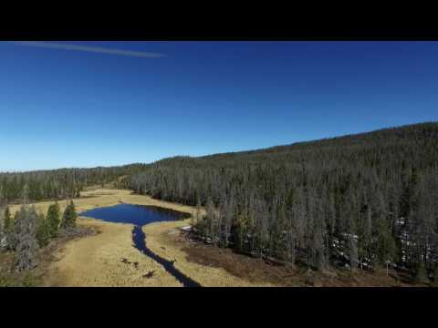 Doodle Phantom over Wyoming