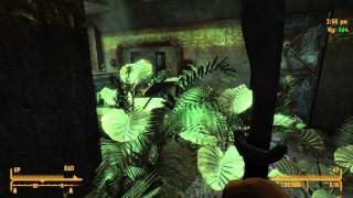 Fallout: New Vegas - There Stands the Grass Walkthrough | HD