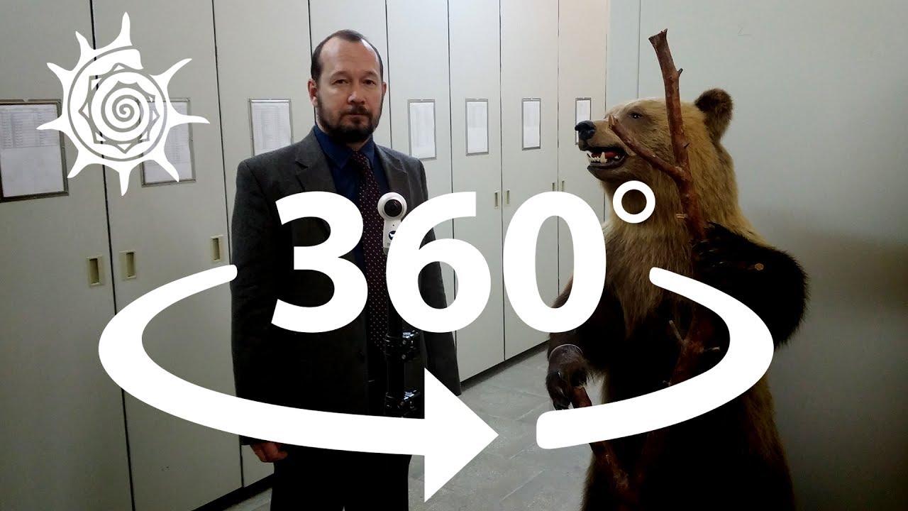 Коллекции музея в 360 | часть 2, коллекция млекопитающих