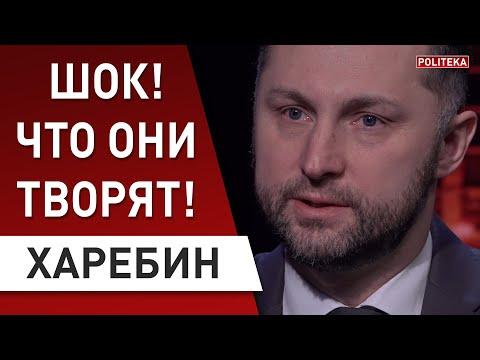 Зеленскому всё трудней управлять страной: Харебин - кто против президента?