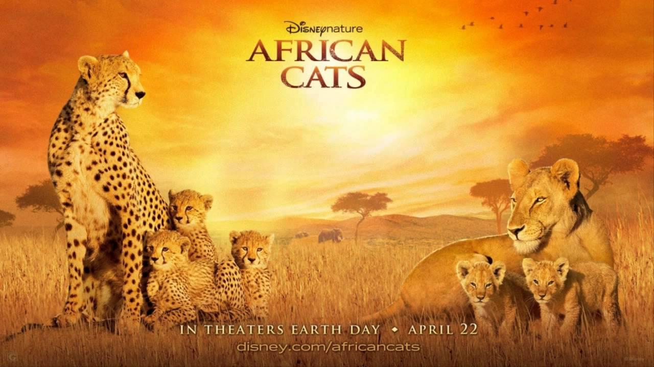 Best 37+ african cats wallpaper on hipwallpaper | beautiful cats.