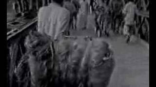 Footage of liberation war of Bangladesh