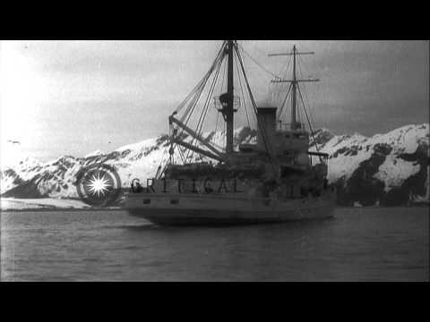 USS Gannet near Bear Glacier in Alaska HD Stock Footage