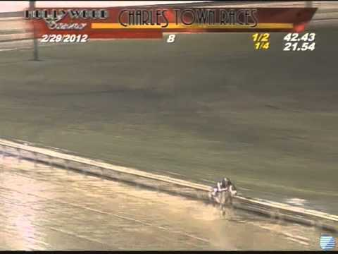Worst Horse Racing Accident I've ever seen