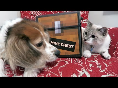 MINECHEST UNBOXING WITH MILQUE & MOLLY - MONDAY VLOG