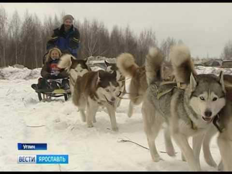Речные круизы из Москвы на теплоходе, цены на речные туры