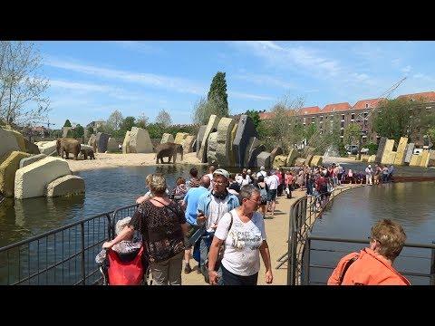 Dierentuin Artis Amsterdam (46): Het nieuwe olifanten buitenverblijf