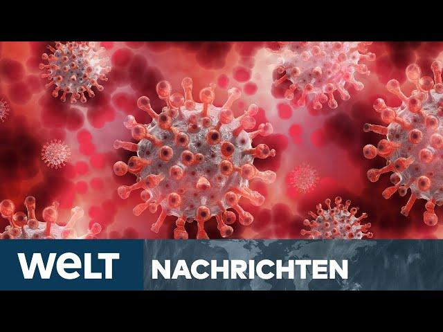 CORONA-STUDIE: Überraschendes Ergebnis - Antikörper trotz Erkrankung teilweise nicht nachweisbar