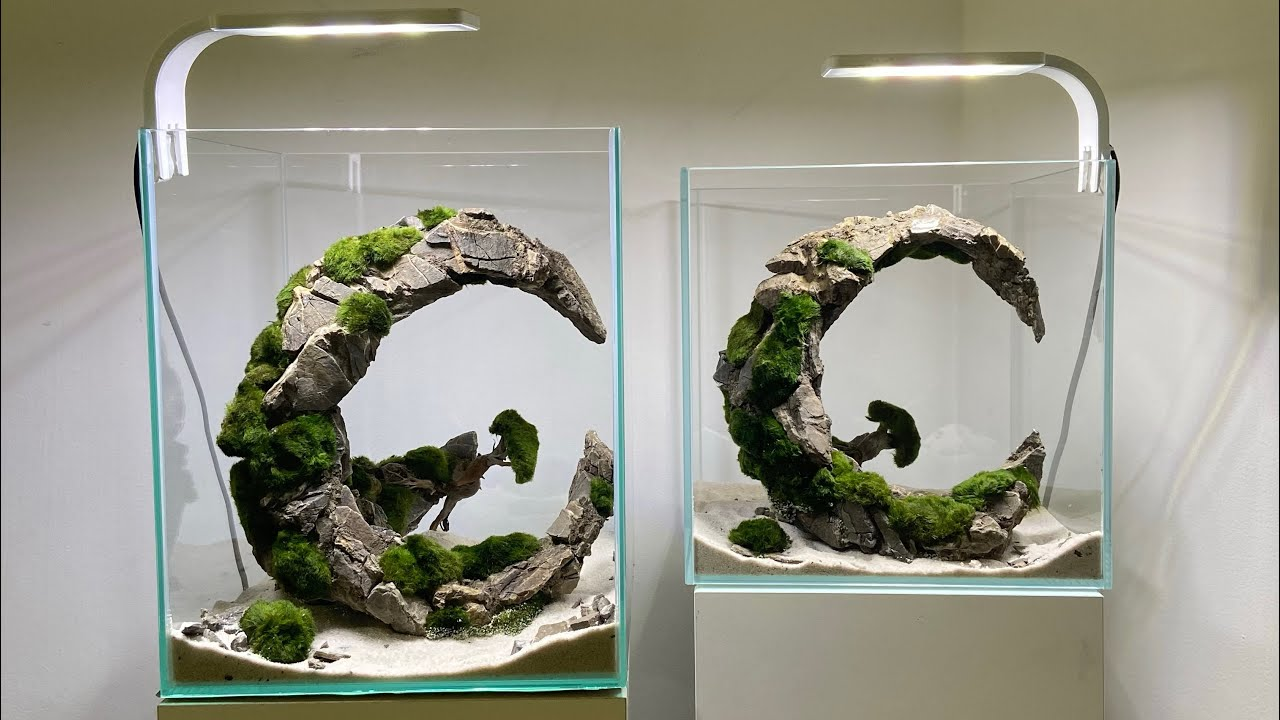 "Aquarium nano design ""Moon's"""