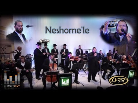 Neshome'le (Abie Rottenberg) Shimmy Levy Ft Levy Falkowitz & Yedidim | שימי לוי, פאלקאוויטש, ידידים
