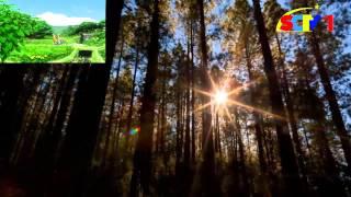 Một ngày bình yên - Mỹ Tâm [Âm nhạc][HD]