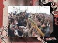 "TROPICAL GORILLA live ""CRUNCH AND BITE"""