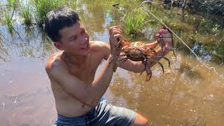 GIANT MUD CRAB Catch And Cook with super spicy chili salt Part 2