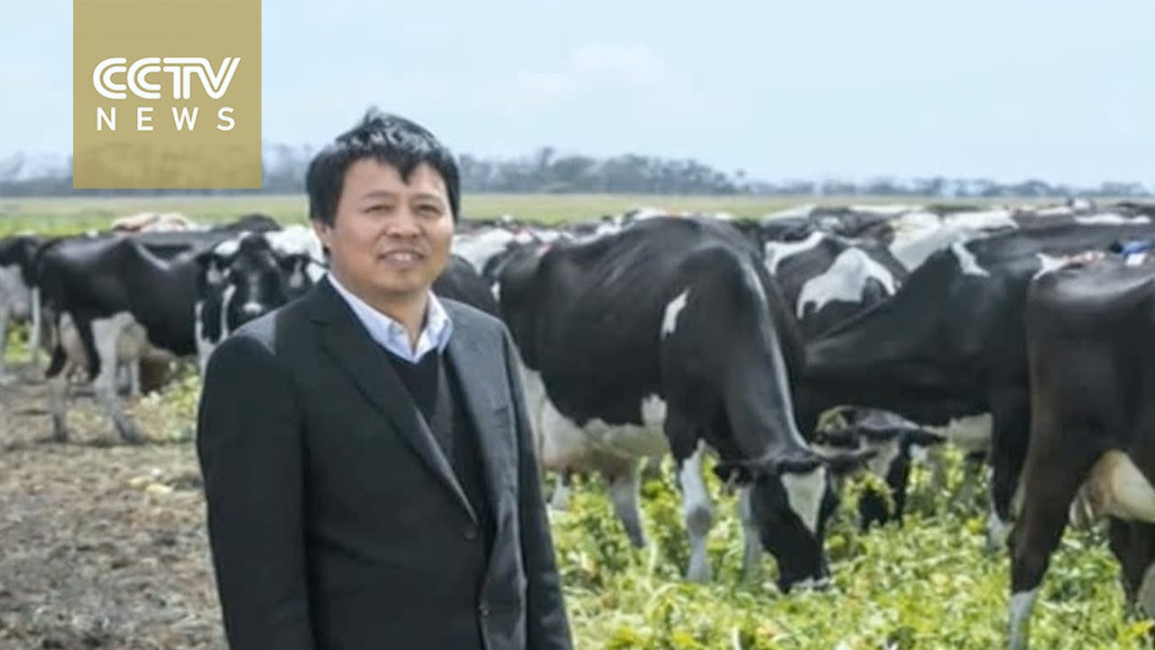 Chinese firm acquires Australia's largest dairy company ...