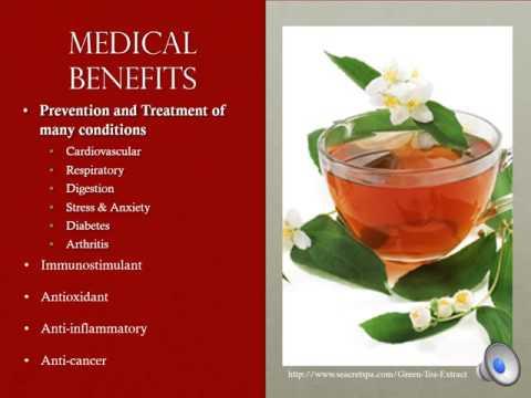 Plant Medicine-Camellia sinensis