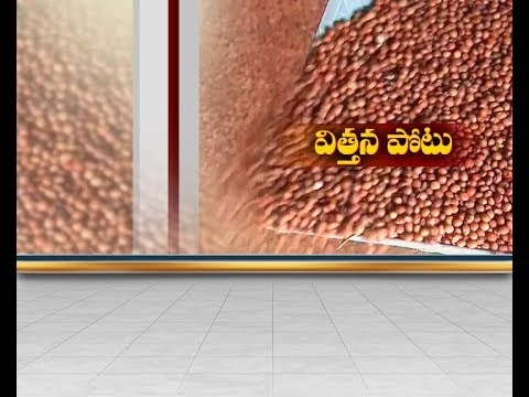 Private Company's Raise  Seeds Prices |  Govt Provide Only 33% Subsidy on Soya