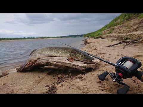 Щука в корягах на воблеры . Рыбалка на реке Вага Архангельская область. Pike Fish.