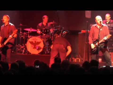 The Stranglers - Straighten Out (Het Depot Leuven 19/11/2015)