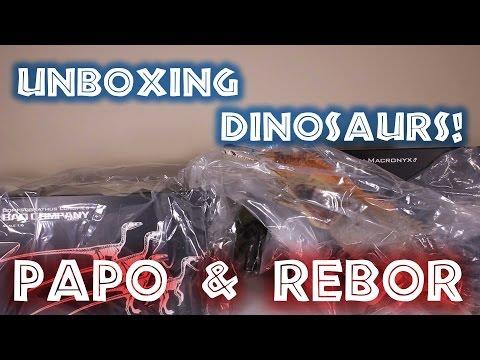 Big Dinosaur Unboxing