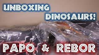 Big Dinosaur Unboxing - Rebor and Papo
