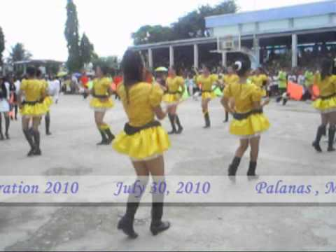 NMC '10 RANHS (Nabangig,Palanas,Masbate