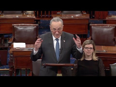 Trump MUST BE IMPEACHED for Inciting the ERECTION on the United States says Chuck Schumer!