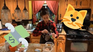 HOMEMADE CAT FOOD FOR $1.18 per day | CHEAP