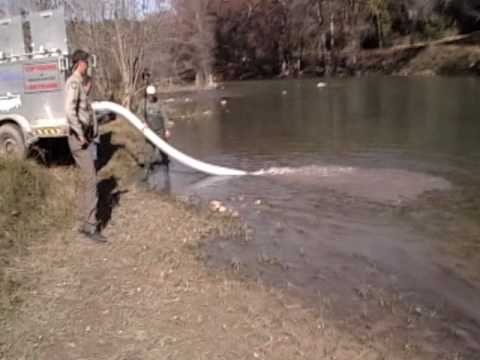 TPWD Trout Stocking Guadalupe.wmv