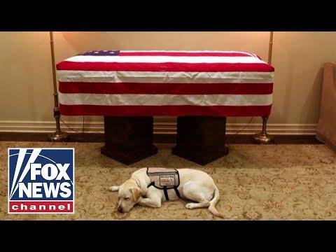 DJ Jaime Ferreira aka Dirty Elbows - Former President Bush's Service Dog Lying Next To His Casket (Pic)