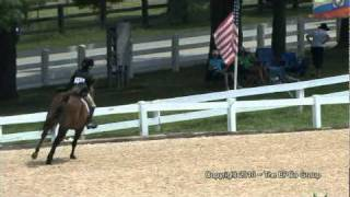 Pony Finals 2010 Best of the Best Medium Green Pony 7th Place is For Sale