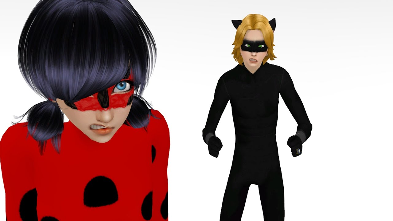 Ladybug And Chat Noir Costumes