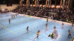 Unihockey NLA Playoff 1/2 Final SVWE-Tigers Langnau 3.Spiel