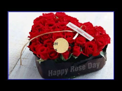 Happy Valentines Day Quotes Images Wishes And Greetings