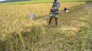 Agricultural Machinery Bangladesh