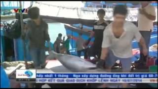 VTV ban tin Tai chinh sang 11 07 2014