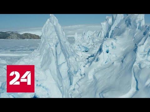 Новый температурный рекорд зафиксировали на острове Сеймур в Антарктике - Россия 24