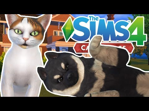 Creating Meri & Buddy | The Sims 4 YouTuber Pets | Episode 2