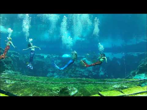 For the First Time Ever, Mermaids Visit the South Carolina Aquarium
