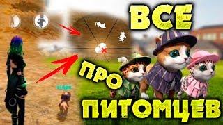 ВСЕ ПРО ПИТОМЦЕВ FREE FIRE! NEWS #180 ФРИ ФАЕР