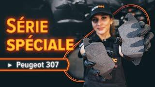 Réparation PEUGEOT 307 par soi-même - voiture guide vidéo