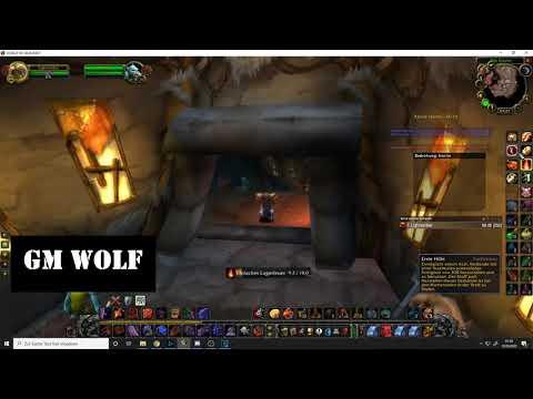 Küchengehilfe | WoW Quest | GM Wolf | World Of Warcraft Classic | HD