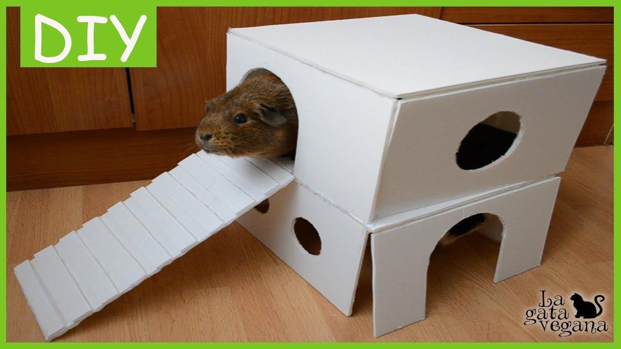 Diy casita d plex para cobayas conejos erizos y otros - Casas para conejos enanos ...