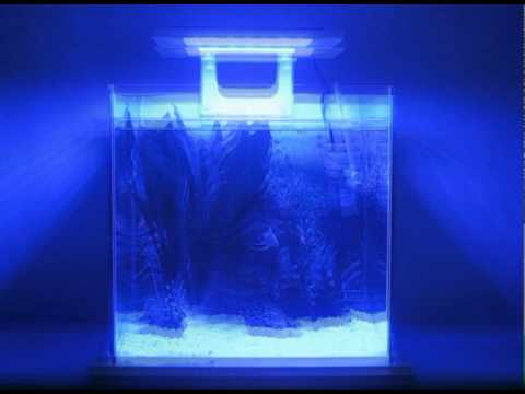 led aquarium system from zetlight nano series youtube. Black Bedroom Furniture Sets. Home Design Ideas