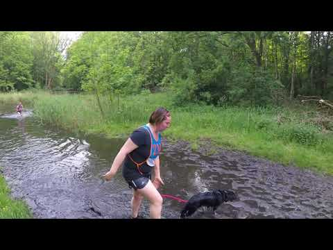 Canicross Amsterdamse Bos 12 05 2018 part 2