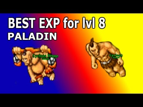 Tibia - Hunt Guide 2019 - BEST EXP Level 8 PALADIN (Pally Solo Hunting)