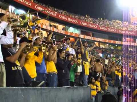 Libres y lokos oh vamos tigres entrando al for Puerta 5b estadio universitario
