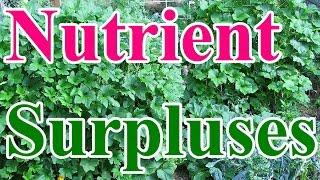 How Long Did It Take to Reach Soil Nutrient Surpluses?