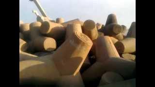 ESCOLLERAS DE COATZACOALCOS LAS TARDES GladiadoreS